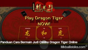 Panduan Cara Bermain Judi Casino Dragon Tiger Online